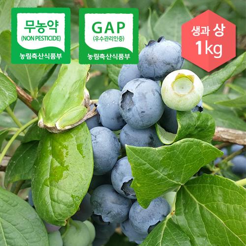 햇 블루베리 생과_상(예약판매) 1kg