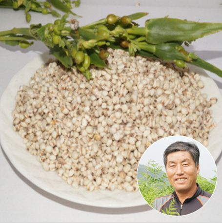 고사리랜드 율무쌀 1kg